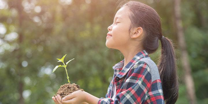 Sustainability Image